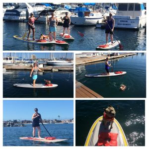 paddleboard retreat